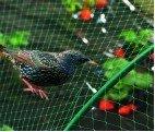 Síť proti ptákům 1,7x10m