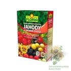 FLORIA Organominerální hnojivo pro jahody a drobné ovoce 2,5 kg