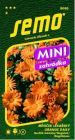 Měsíček ORANGE DAISY MINI