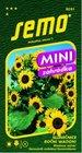 SEMO Slunečnice WAOOH! MINI, do květináčů, výška 50 - 70 cm