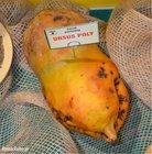 Řepa Ursus Poly žlutá 20kg