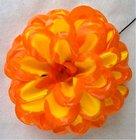 Jiřina vosková pomponkovitá žlutá, oranžový okraj