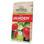 NATURA Substrát pro jahody a drobné ovoce 50 l