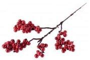 Přízdoba Větvička, cesmína, červené bobule