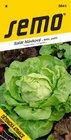 Salát DĚTENICKÁ ATRAKCE polní, letní, střední hlávka