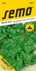 Špenát TRUMPET/LAZIO F1 jarní a přezimující, odolný k plísni špenátové
