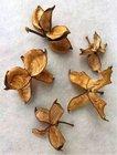 Vánoční Dekorace Cotton Flower 5 ks